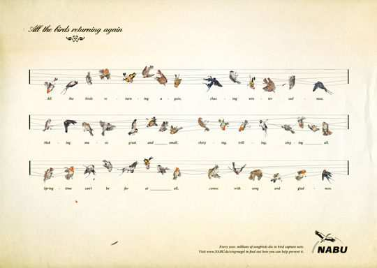 Print Ad - Captured Birds