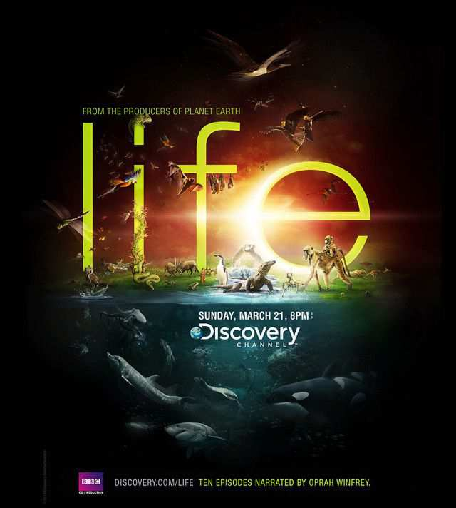 The Discovery Channel - Life as an example of inspirational typography example in print ads