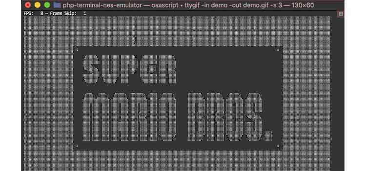 PHP Terminal NES Emulator