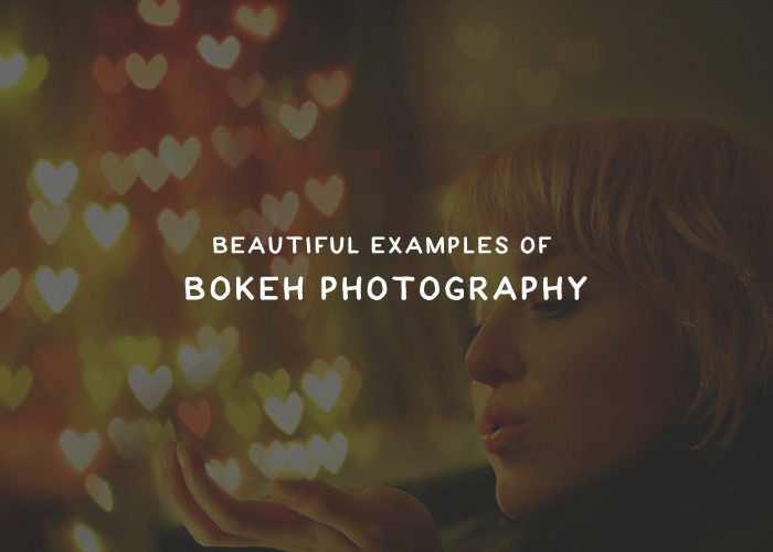 bokeh-thumb
