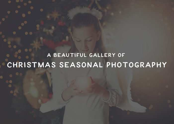 A Beautiful Gallery of Christmas Seasonal Photography