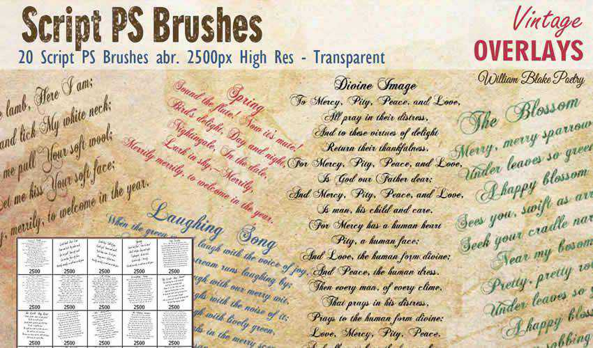 Script vintage antique adobe photoshop ps brush brushes abr pack set free