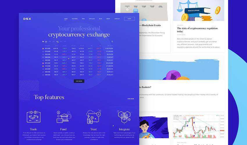 DSX Corporate Site business website web design inspiration ui ux