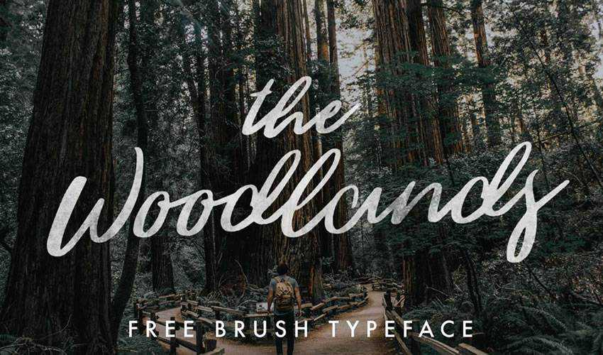 free font calligraphy typography script The Woodlands