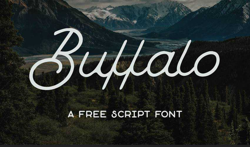 free font calligraphy typography script Buffalo
