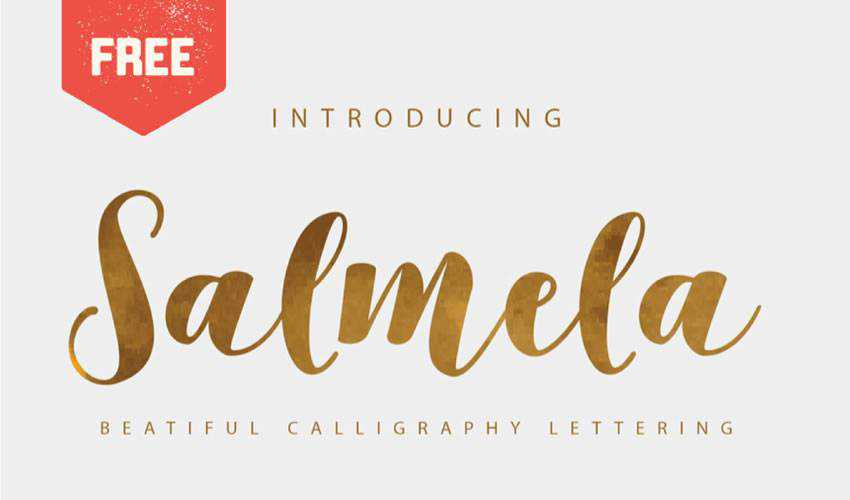 free font calligraphy typography script Salmela Calligraphy