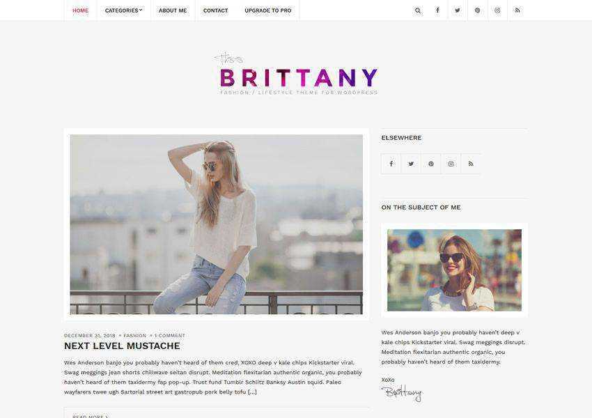 Brittany free wordpress theme wp responsive fashion lifestyle blog
