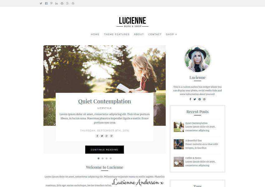Lucienne Elegant free wordpress theme wp responsive fashion lifestyle blog