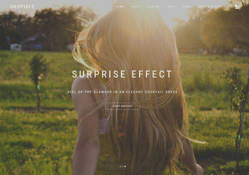 ShopIsle free wordpress theme wp responsive landing page business