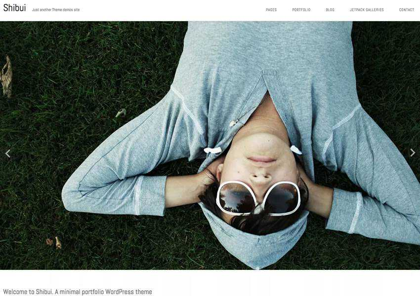 Shibui free wordpress theme wp responsive blog minimal design minimalist lightweight