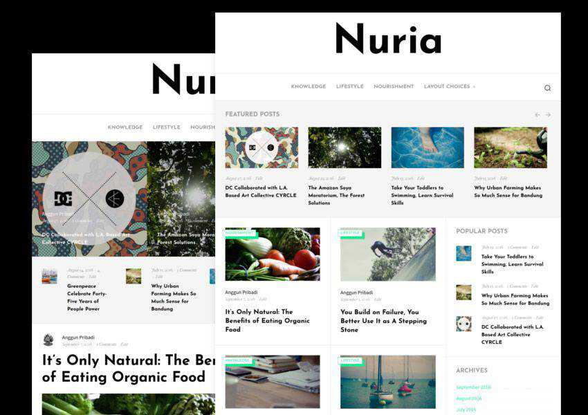 Nuria free wordpress theme wp responsive personal blog blogger blogging