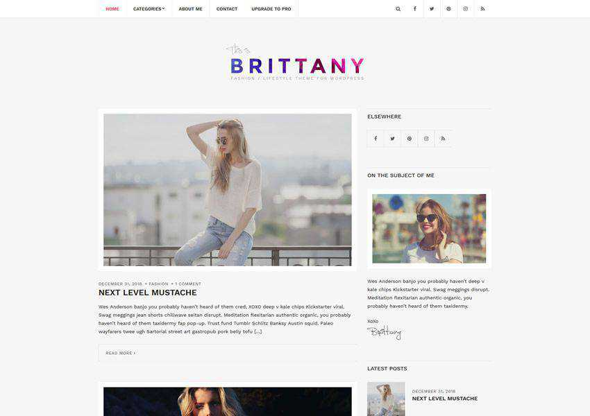 Brittany free wordpress theme wp responsive personal blog blogger blogging