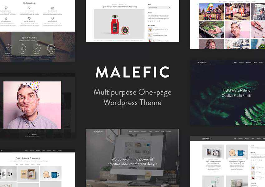 Malefic wordpress theme photographer portfolio camera