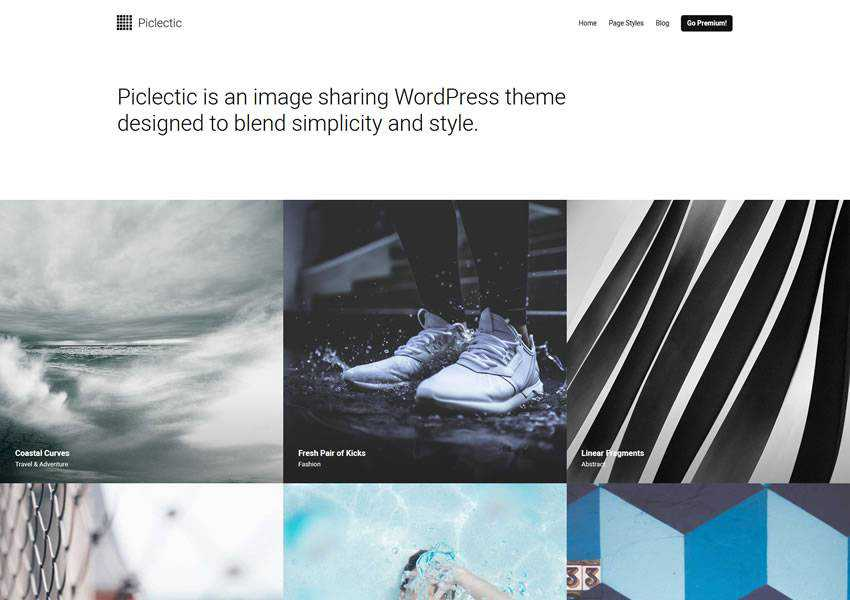 Piclectic Photo free wordpress theme wp responsive photographer portfolio camera