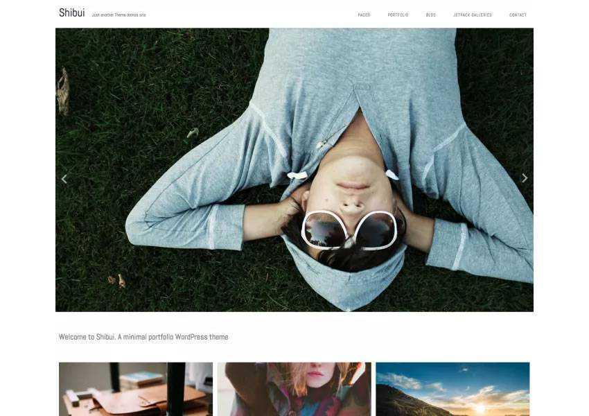 Shibui Minimalist free wordpress theme wp responsive creative designer agency portfolio camera