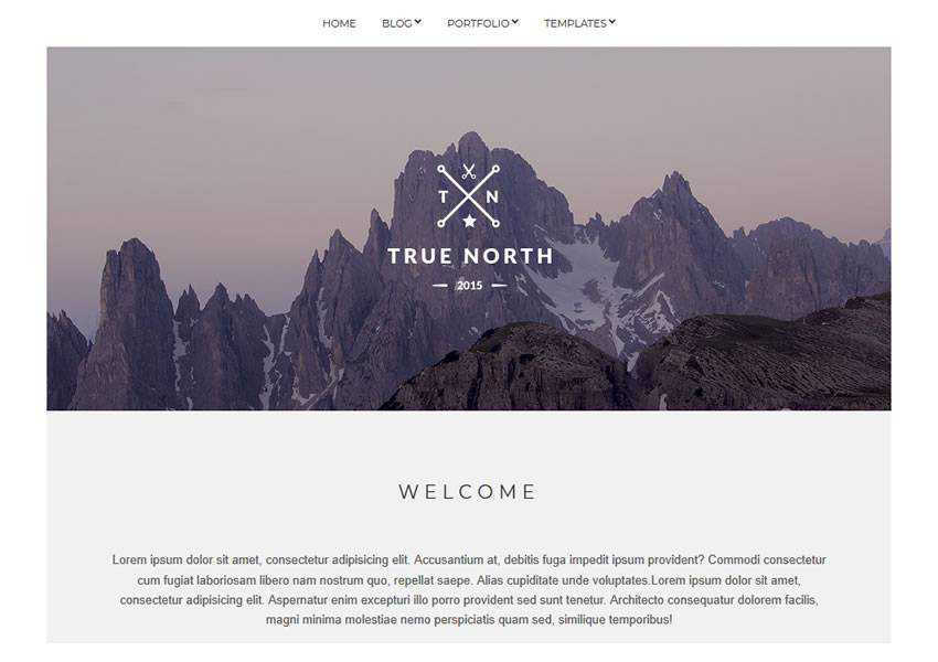 True North free wordpress theme wp responsive creative designer agency portfolio camera