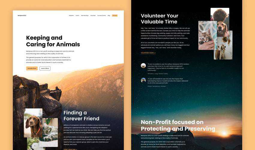 Mariposa SPCA non-profit charity website web design inspiration ui ux