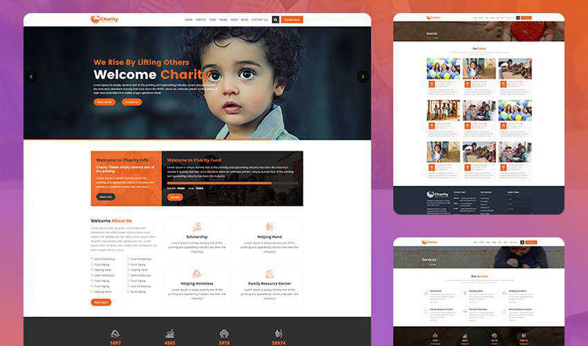 Crowd Fund non-profit charity website web design inspiration ui ux