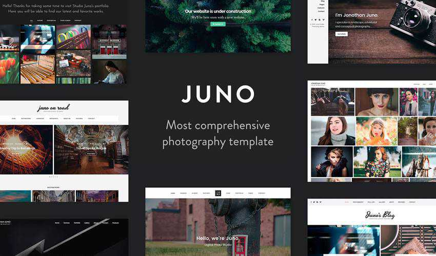 Juno Photography Template photographer portfolio camera website web design inspiration ui ux