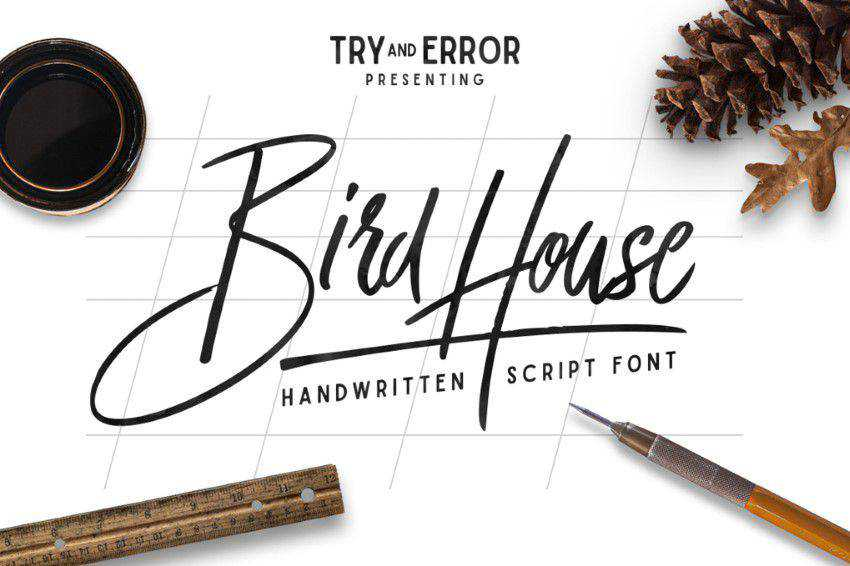 Bird House Script quirky creative font