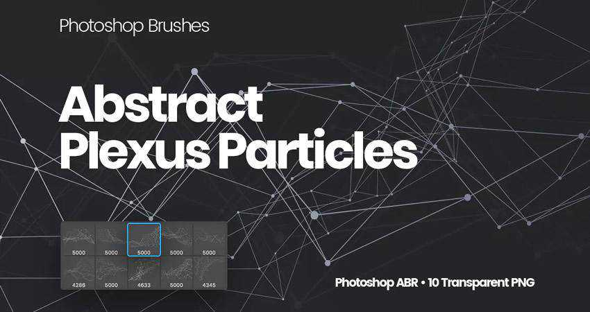 Plexus Particles abstract photoshop brush pack set adobe
