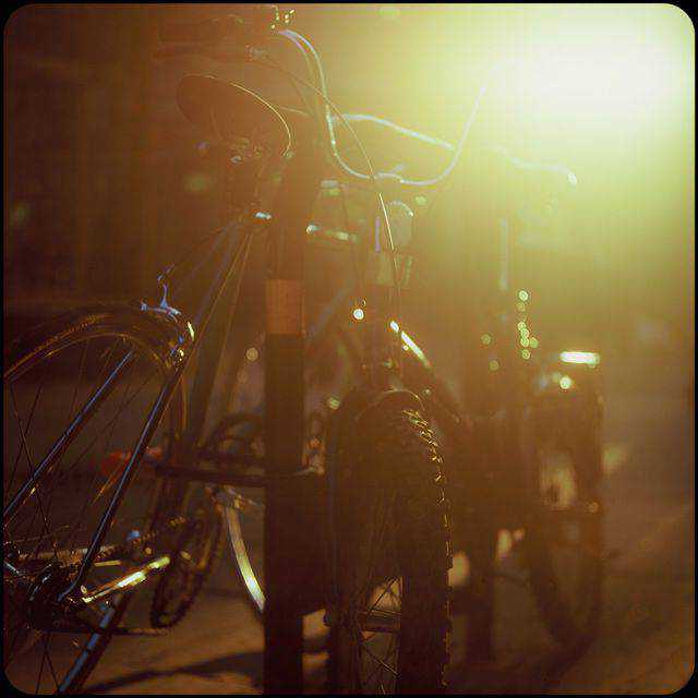 backlit photography photographer shot photo Backlit