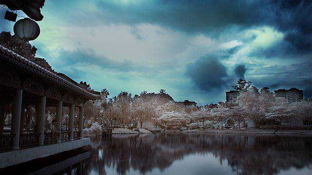 shot infrared Chinese Gardens
