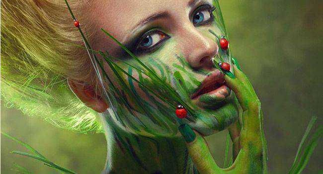 Ladybird fantasy photo