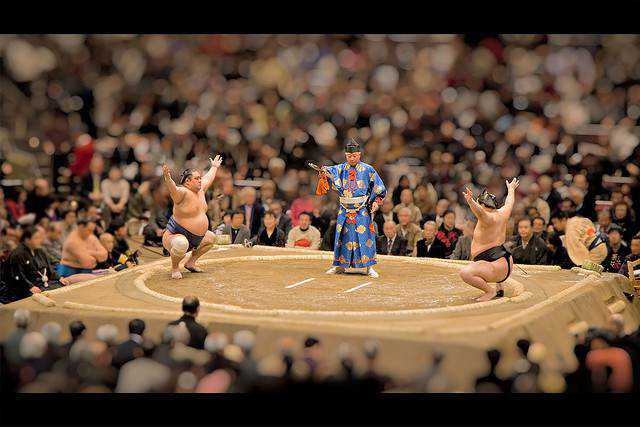 tilt-shift photography miniature toy-Sumo