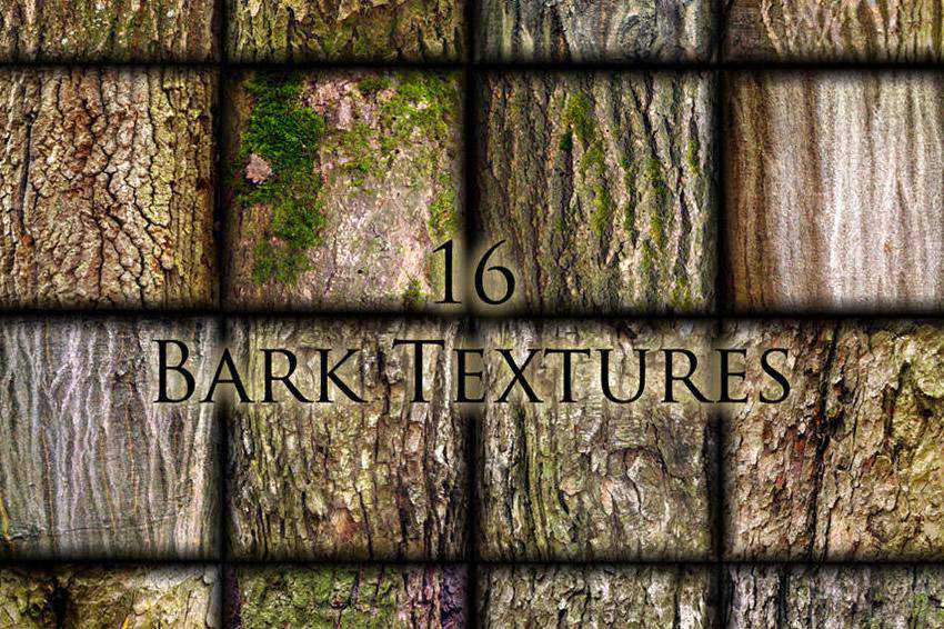 free high-res high resolution wood wooden textures bark