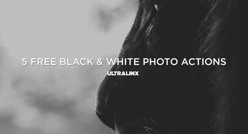 bw black white effects photo free photoshop actions