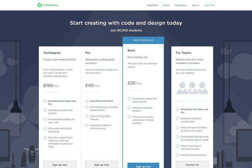 Team Treehouse Pricing Page Web Design Inspiration