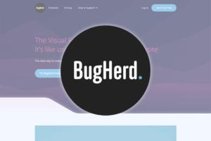 bugherd-review-thumb