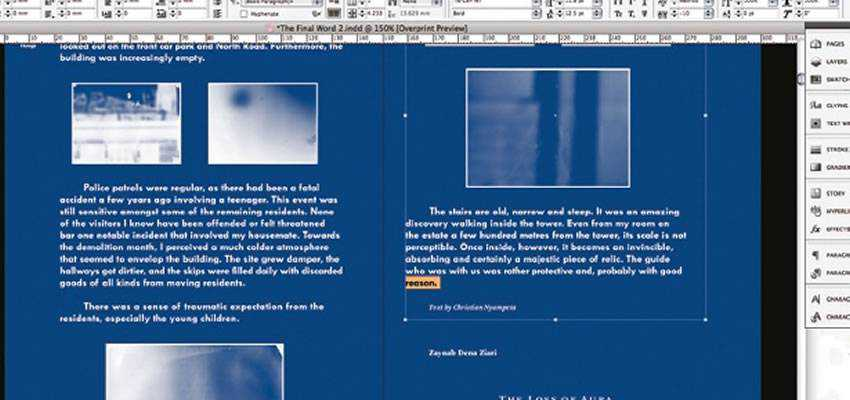 Design Distinctive Monotone Layouts in Adobe InDesign