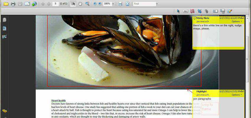 Annotations adobe indesign plugin