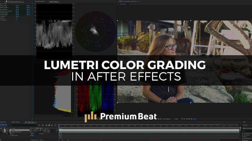 Color Grading Using the Lumetri Color Panels