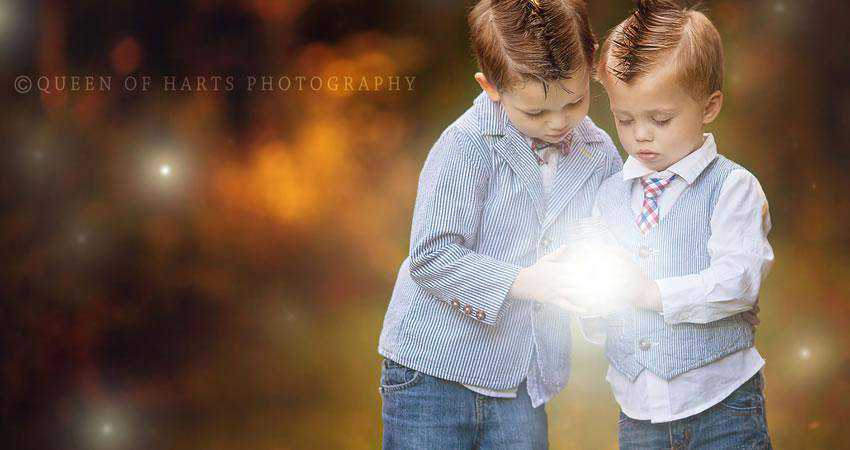 Firefly Overlay Photography Effects
