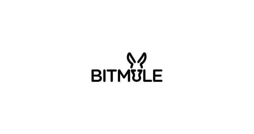 bitmule flat logo inspiration example