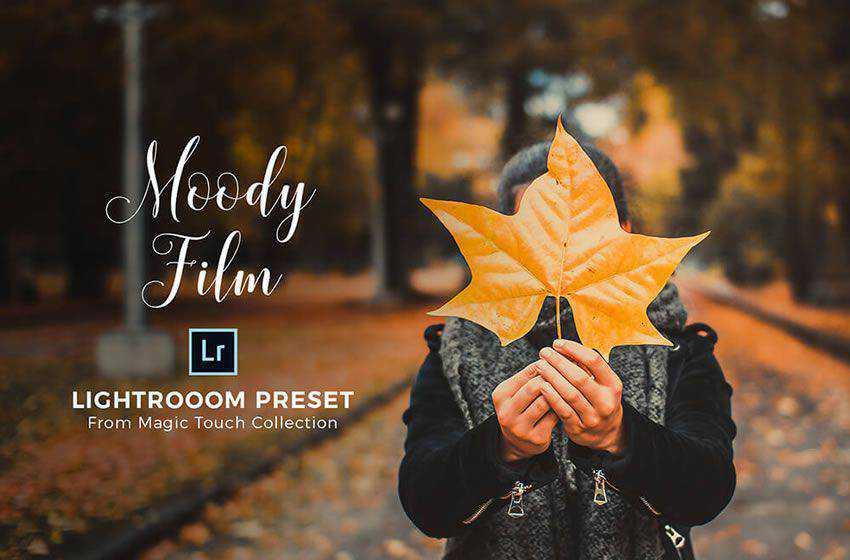 Moody free cinematic movie lightroom preset