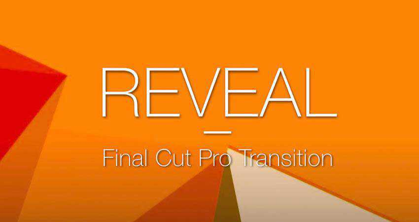 Vertical Reveal Transition free final cut pro fcpx preset template