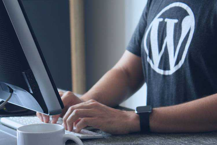 The Future of Freelancing with WordPress