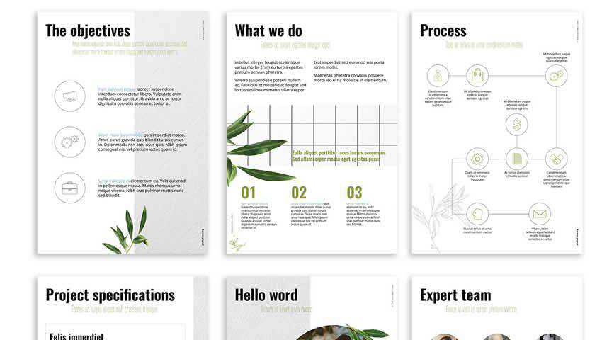 Olive Free Presentation IndDesign Template