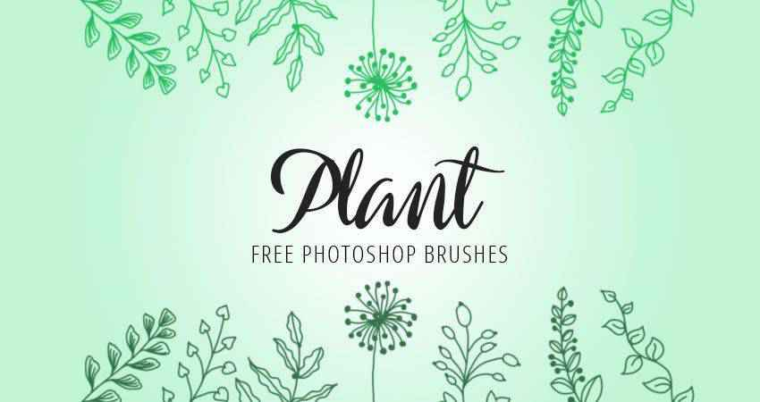 Plant free photoshop nature brush sets