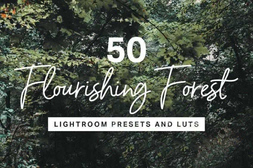 Flourishing Forest Lightroom Presets
