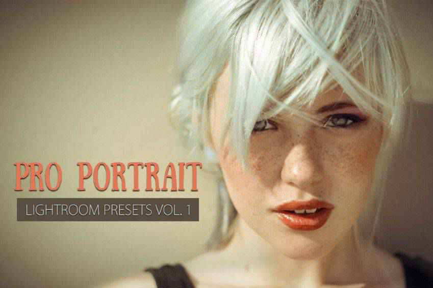 10 Portrait Lightroom Presets Ver.1