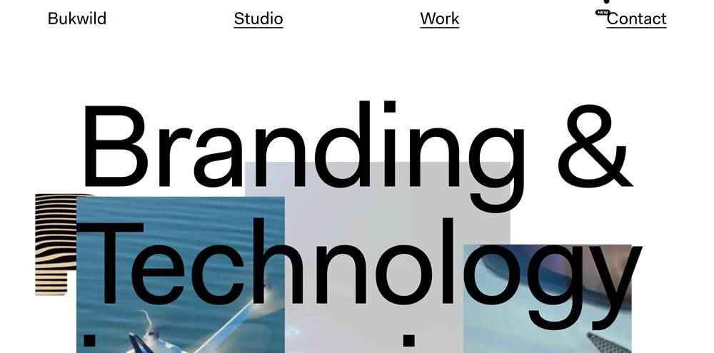 Bukwild clean web design inspiration example website