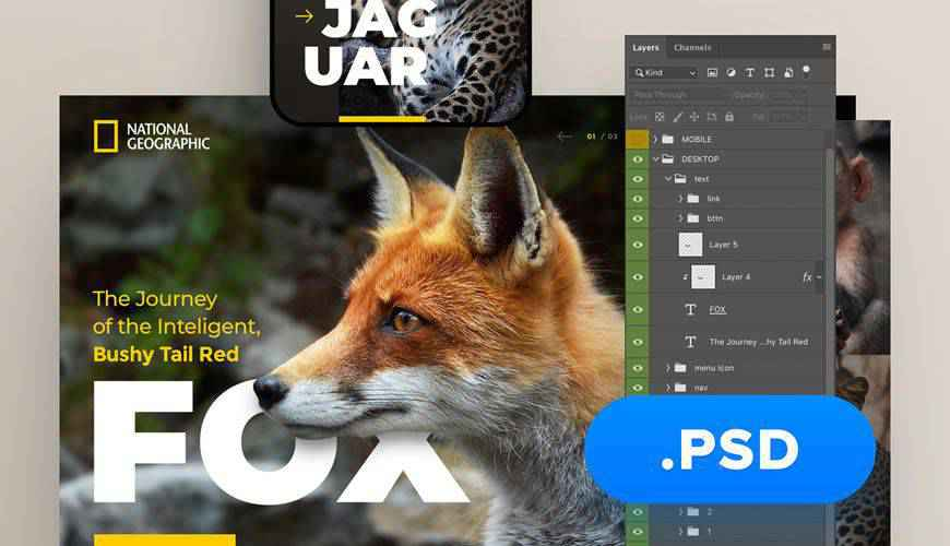 National Geographic Website PSD Web Template Adobe Photoshop