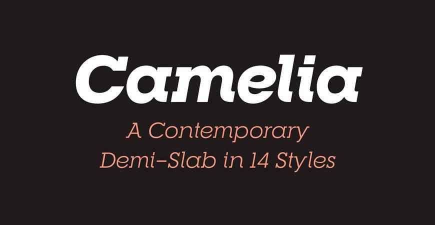 RNS Camelia free title headline typography font typeface