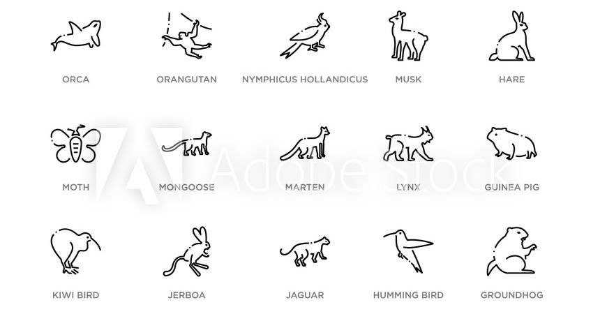 Animals Wildlife Icon Logo Templates