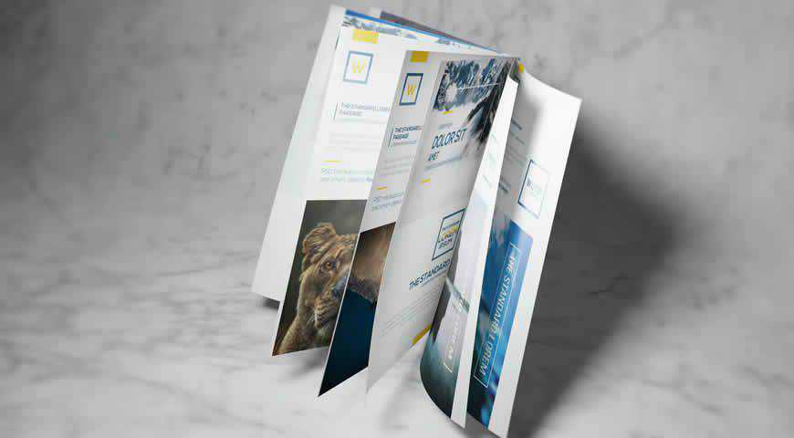 A4 A5 Brochure-Booklet Photoshop PSD Mockup Template
